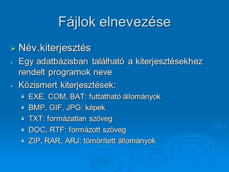 Fájlok elnevezése  Név.kiterjesztés Egy adatbázisban található a kiterjesztésekhez rendelt programok neve Közismert kiterjesztések: EXE, COM, BAT: fu