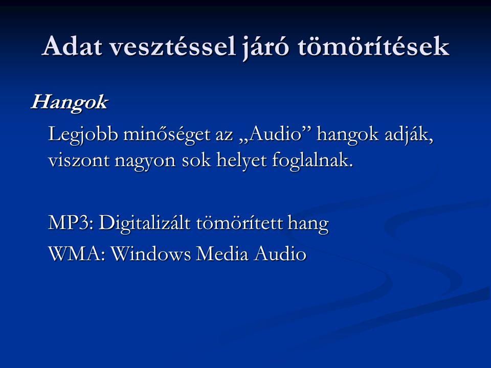 Legismertebb tömörítőprogramok Veszteségmentes: Veszteségmentes: Arj (arj) Arj (arj) WinRAR (.rar) WinRAR (.rar) WinZIP (.zip) WinZIP (.zip) Veszteséges: Veszteséges: IrfanView (jpg) IrfanView (jpg) Lame (mp3) Lame (mp3)