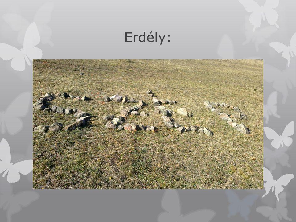 Erdély: