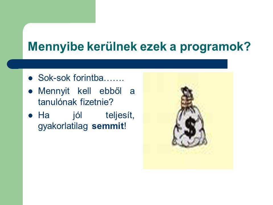 Mennyibe kerülnek ezek a programok? Sok-sok forintba……. Mennyit kell ebből a tanulónak fizetnie? Ha jól teljesít, gyakorlatilag semmit!