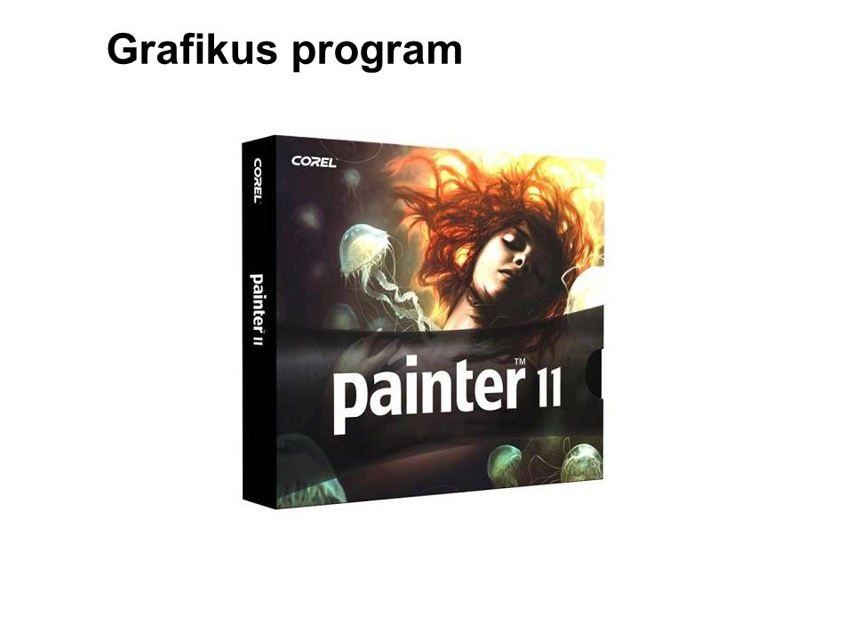 Grafikus program