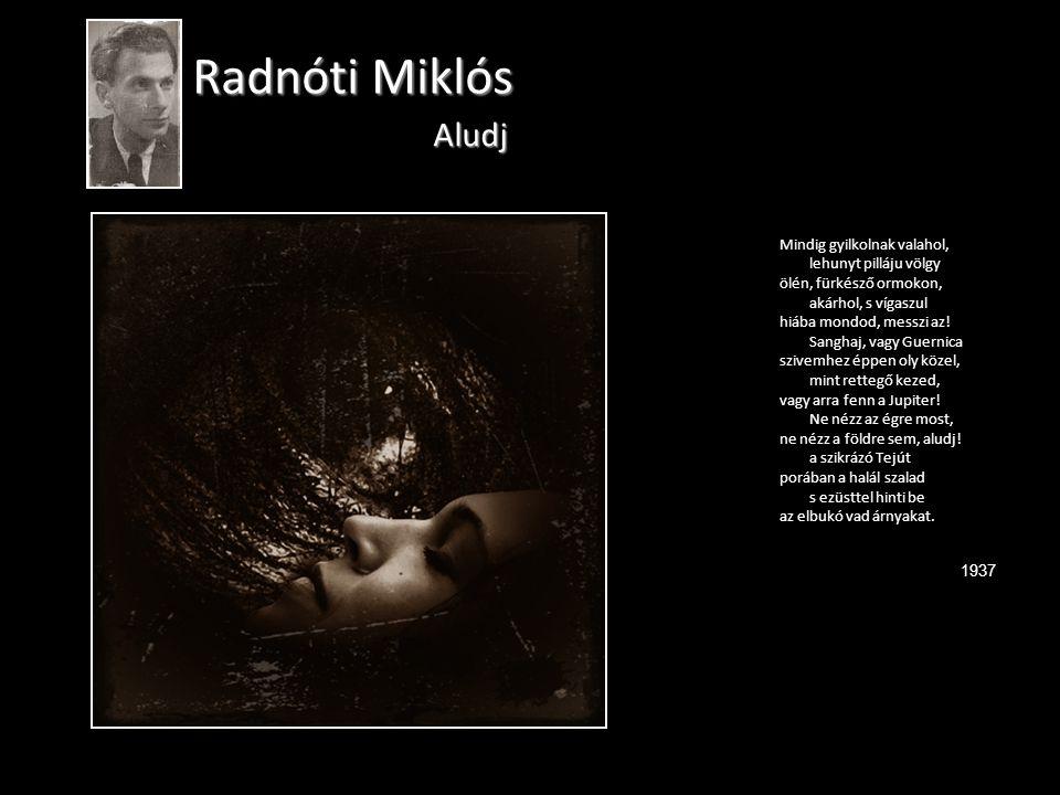 Radnóti Miklós Aludj Mindig gyilkolnak valahol, lehunyt pilláju völgy ölén, fürkésző ormokon, akárhol, s vígaszul hiába mondod, messzi az.