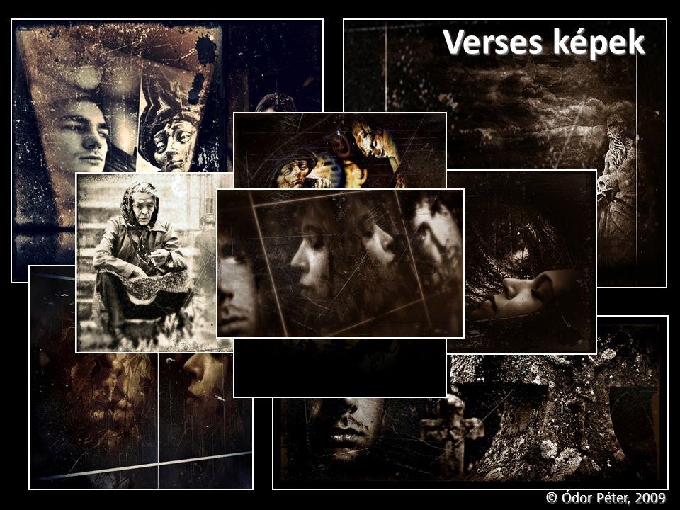 Verses képek © Ódor Péter, 2009