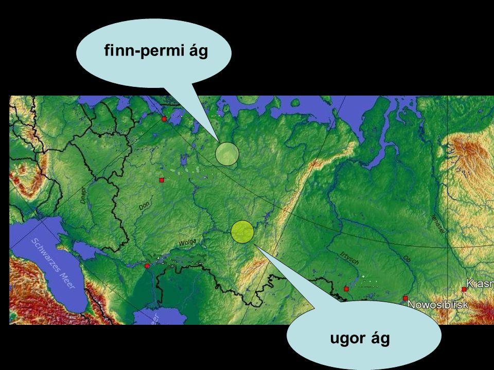 finn-permi ág ugor ág