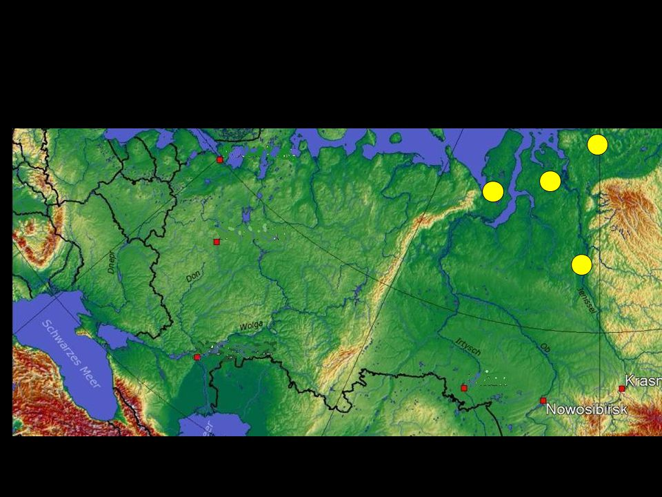 Az uráli öshaza kutatásának története http://ludens.elte.hu/~briseis/finnugor/ostort/oshazakut.html Az uráli népek története http://ludens.elte.hu/~briseis/finnugor/ Az urali nyelvcsalád (ebben van a táblázat) http://hu.wikipedia.org/wiki/Ur%C3%A1li_nyelvcsal%C3%A1d A szamojéd nyelvek http://hu.wikipedia.org/wiki/Szamoj%C3%A9d_nyelvek A finnugor nyelvrokonság http://hu.wikipedia.org/wiki/Finnugor_nyelvrokons%C3%A1g#Vogul- magyar Zürjének (komik) http://hu.wikipedia.org/wiki/Komi_K%C3%B6zt%C3%A1rsas%C3%A1g Votjákok (udmurtok) http://hu.wikipedia.org/wiki/Udmurtok A cseremiszek (marik) története http://ludens.elte.hu/~briseis/finnugor/egyestort/mari.html Irodalomjegyzék