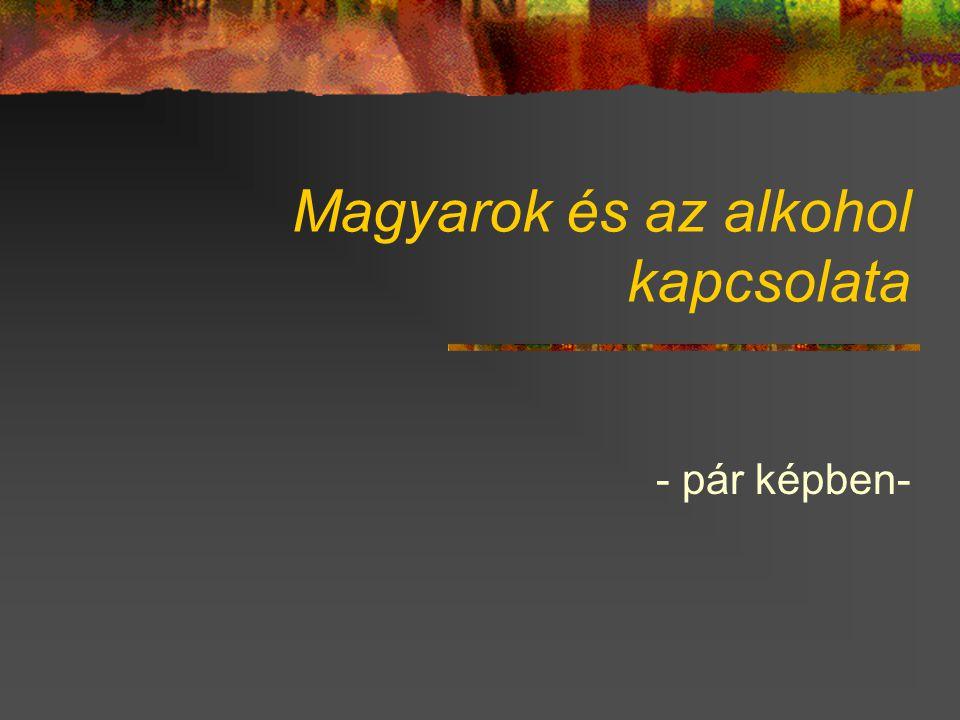 Magyarok és az alkohol kapcsolata - pár képben-