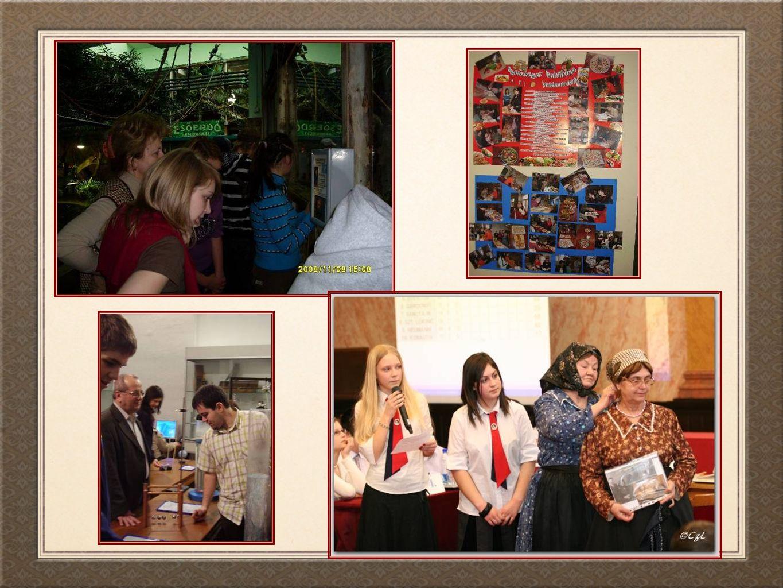 Innovatív pedagógiai gyakorlataink Megyei szintű továbbképzés nyelvtanárok számára, melynek témája a számítógéppel támogatott nyelvoktatás volt a német, angol és olasz órákon.