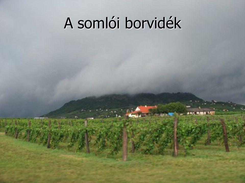 A somlói borvidék