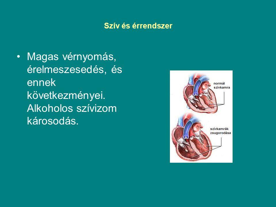 Szív és érrendszer Magas vérnyomás, érelmeszesedés, és ennek következményei. Alkoholos szívizom károsodás.