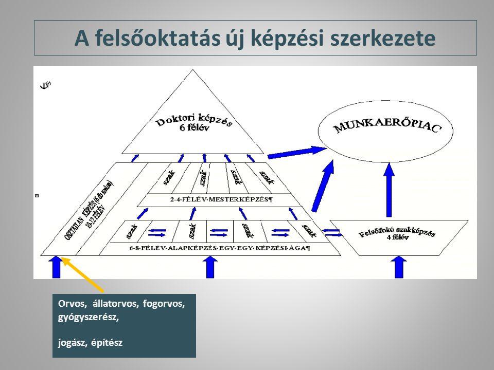A felsőoktatás új képzési szerkezete Orvos, állatorvos, fogorvos, gyógyszerész, jogász, építész