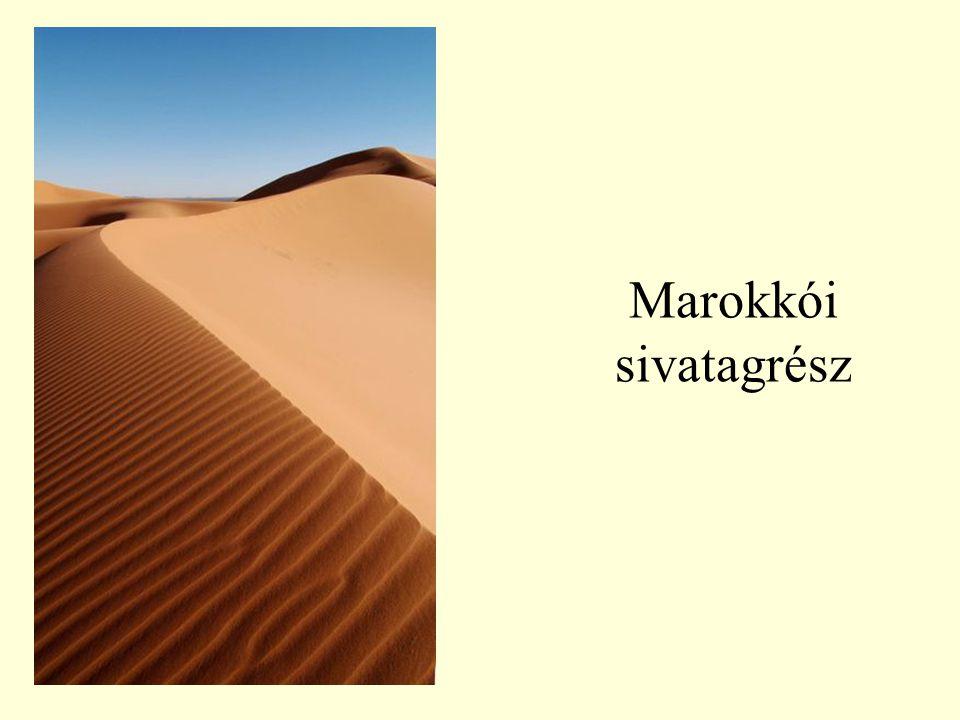 Marokkói sivatagrész