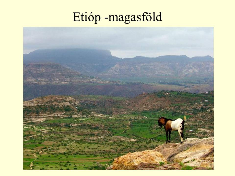 Etióp -magasföld