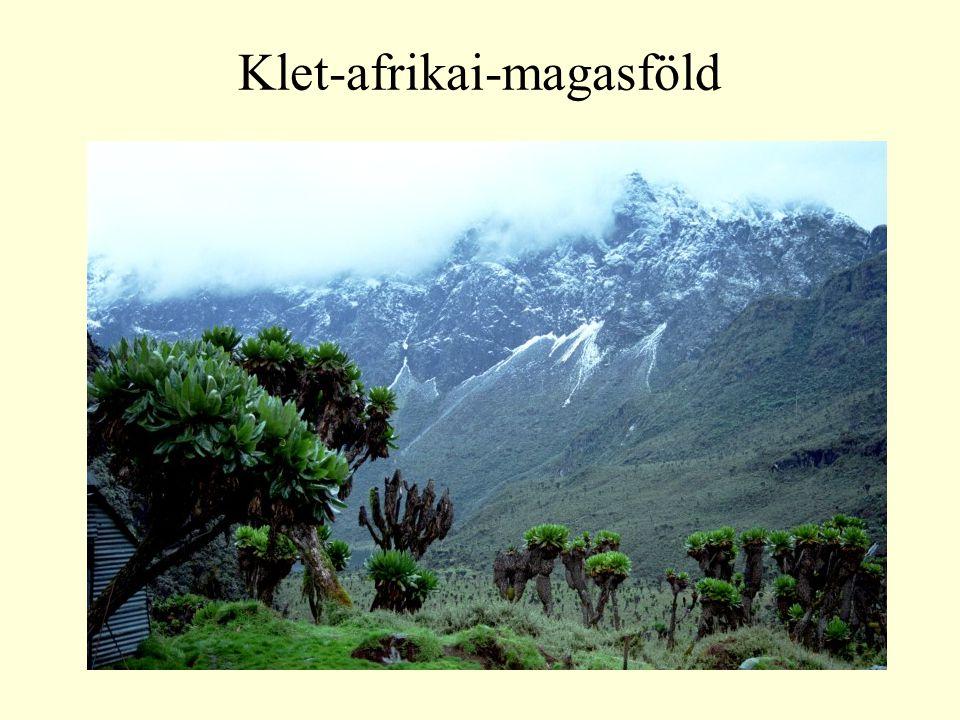 Klet-afrikai-magasföld