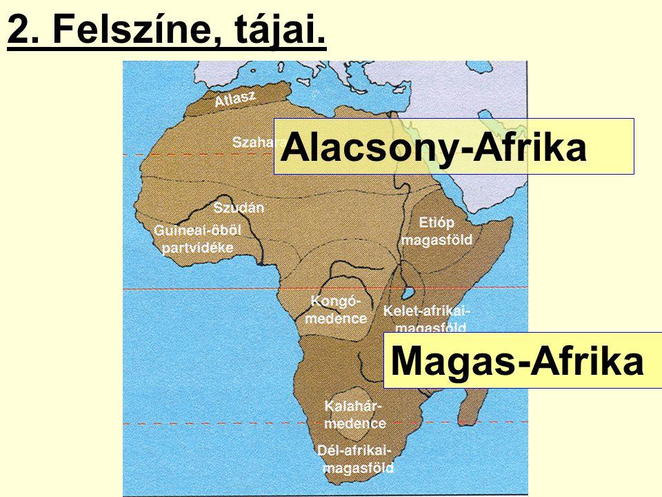 2. Felszíne, tájai. Magas-Afrika Alacsony-Afrika