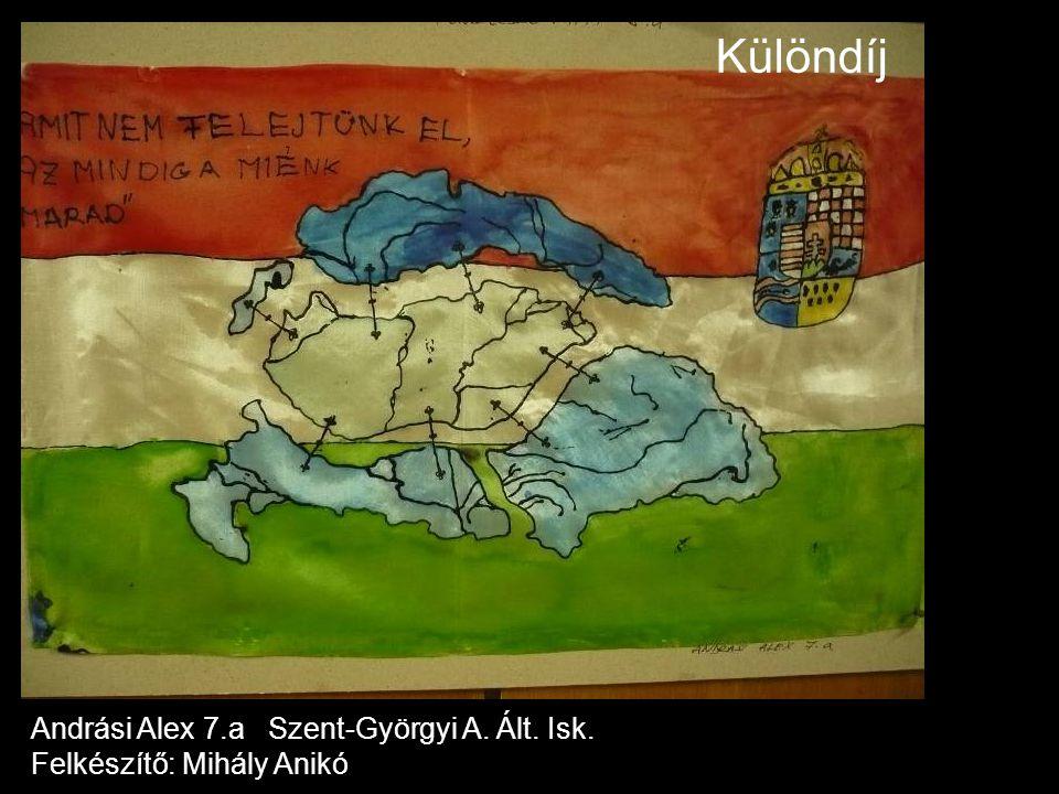 Különdíj Andrási Alex 7.a Szent-Györgyi A. Ált. Isk. Felkészítő: Mihály Anikó