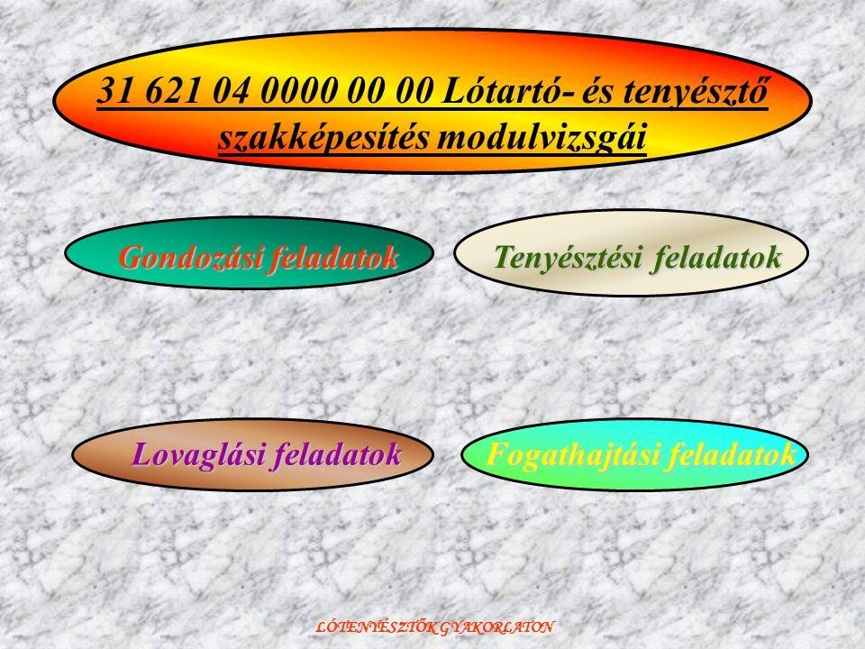 LÓTENYÉSZTŐK GYAKORLATON Tenyésztési feladatok 31 621 04 0000 00 00 Lótartó- és tenyésztő szakképesítés modulvizsgái Fogathajtási feladatok Lovaglási