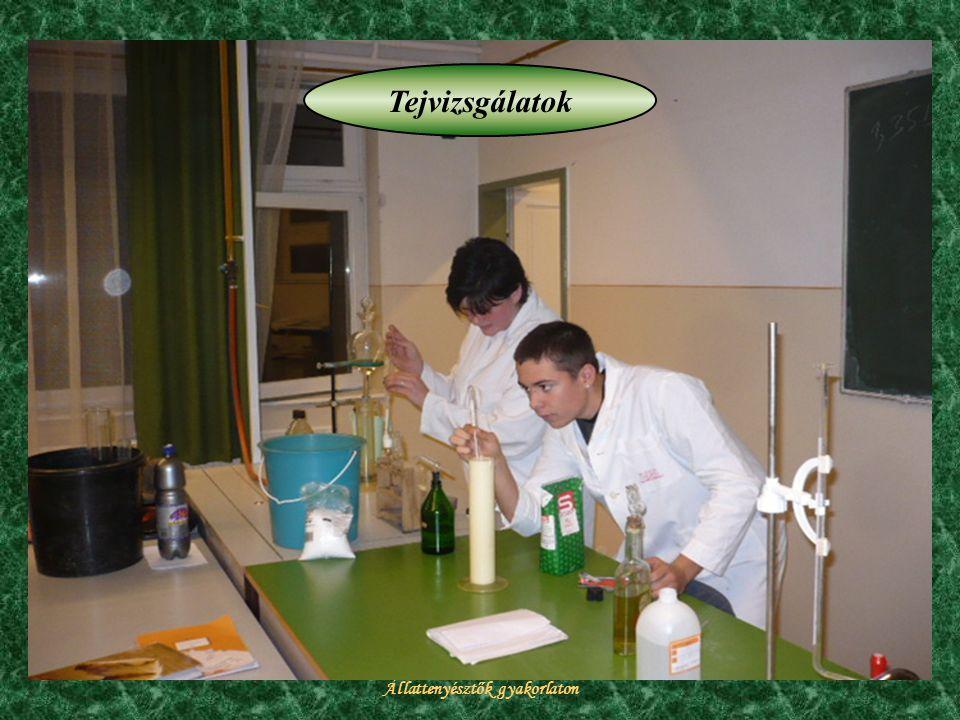 Állattenyésztők gyakorlaton Tejvizsgálatok