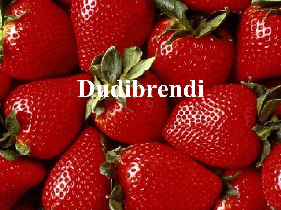 Dudibrendi