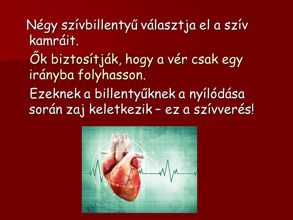 Négy szívbillentyű választja el a szív kamráit. Négy szívbillentyű választja el a szív kamráit. Ők biztosítják, hogy a vér csak egy irányba folyhasson