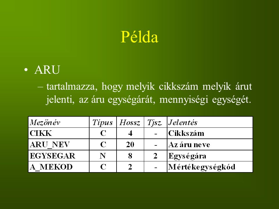 Példa ARU –tartalmazza, hogy melyik cikkszám melyik árut jelenti, az áru egységárát, mennyiségi egységét.