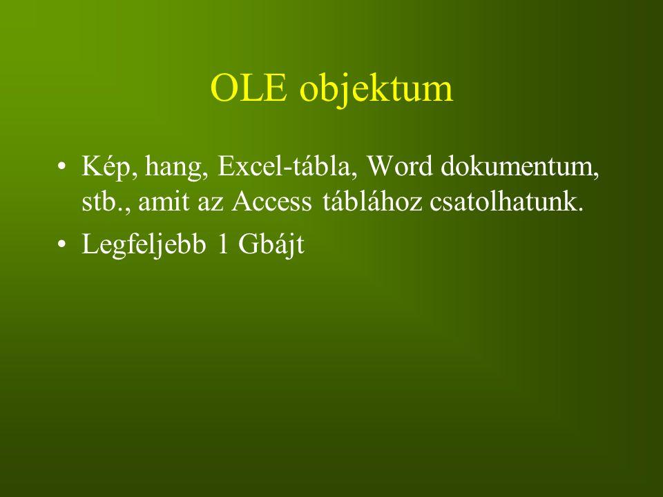 OLE objektum Kép, hang, Excel-tábla, Word dokumentum, stb., amit az Access táblához csatolhatunk. Legfeljebb 1 Gbájt