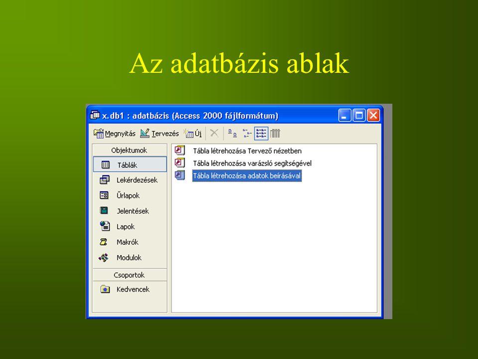 Az adatbázis ablak