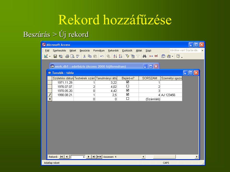 Rekord hozzáfűzése Beszúrás > Új rekord