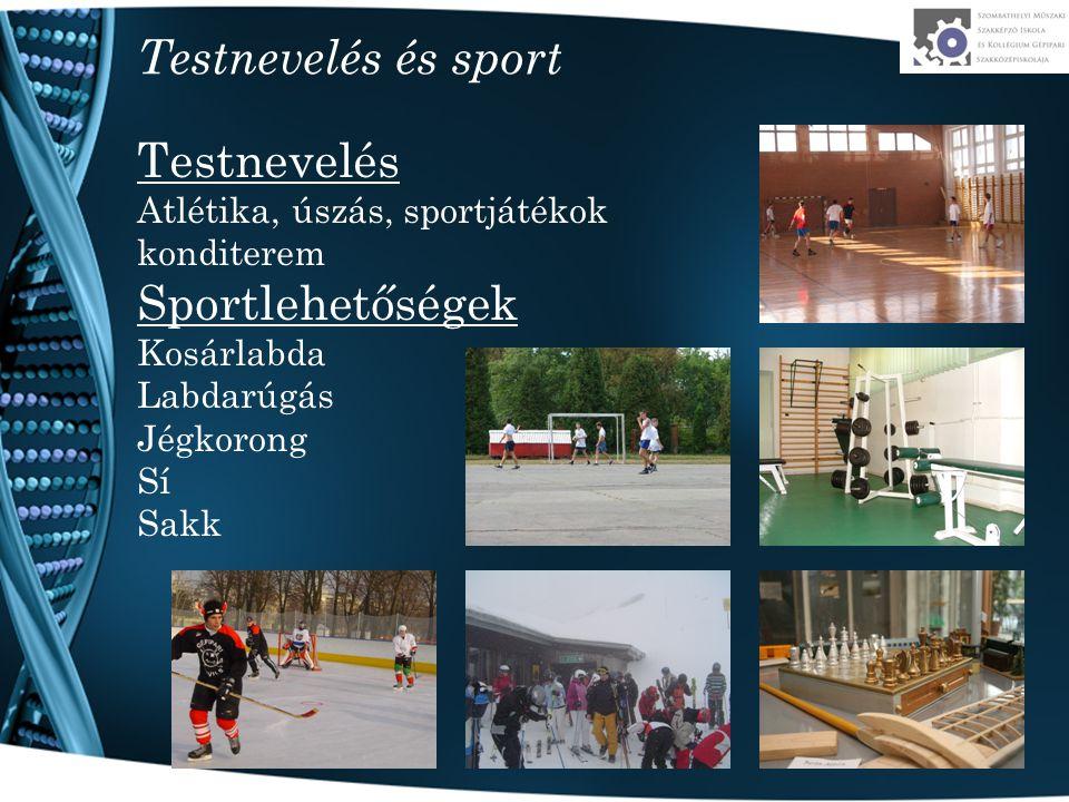 Testnevelés és sport Testnevelés Atlétika, úszás, sportjátékok konditerem Sportlehetőségek Kosárlabda Labdarúgás Jégkorong Sí Sakk