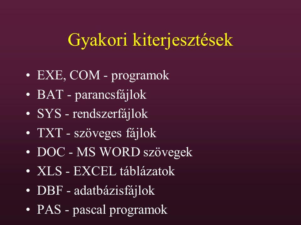 Gyakori kiterjesztések EXE, COM - programok BAT - parancsfájlok SYS - rendszerfájlok TXT - szöveges fájlok DOC - MS WORD szövegek XLS - EXCEL táblázat