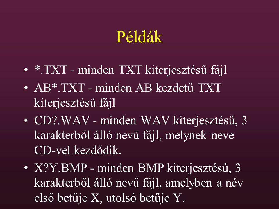 Példák *.TXT - minden TXT kiterjesztésű fájl AB*.TXT - minden AB kezdetű TXT kiterjesztésű fájl CD?.WAV - minden WAV kiterjesztésű, 3 karakterből álló