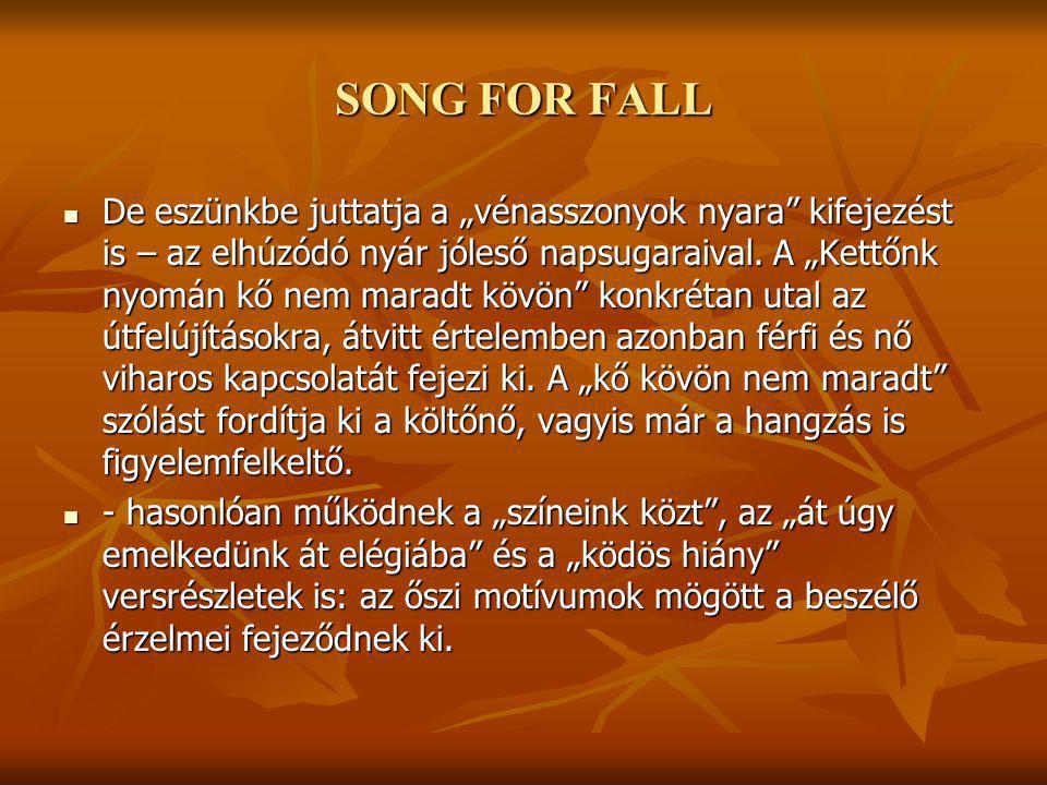 """SONG FOR FALL De eszünkbe juttatja a """"vénasszonyok nyara kifejezést is – az elhúzódó nyár jóleső napsugaraival."""