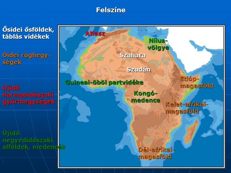 Felszíne Ősidei ősföldek, táblás vidékek Szahara Szudán Óidei röghegy- ségek Etióp- magasföld Kelet-afrikai- magasföld Dél-afrikai- magasföld Újidő harmadidőszaki gyűrthegységek Atlasz Újidő negyedidőszaki alföldek, medencék Guineai-öböl partvidéke Kongó- medence Nílus- völgye