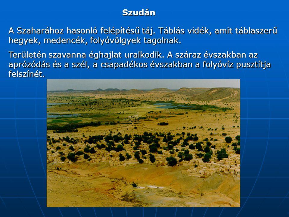 Szudán A Szaharához hasonló felépítésű táj.