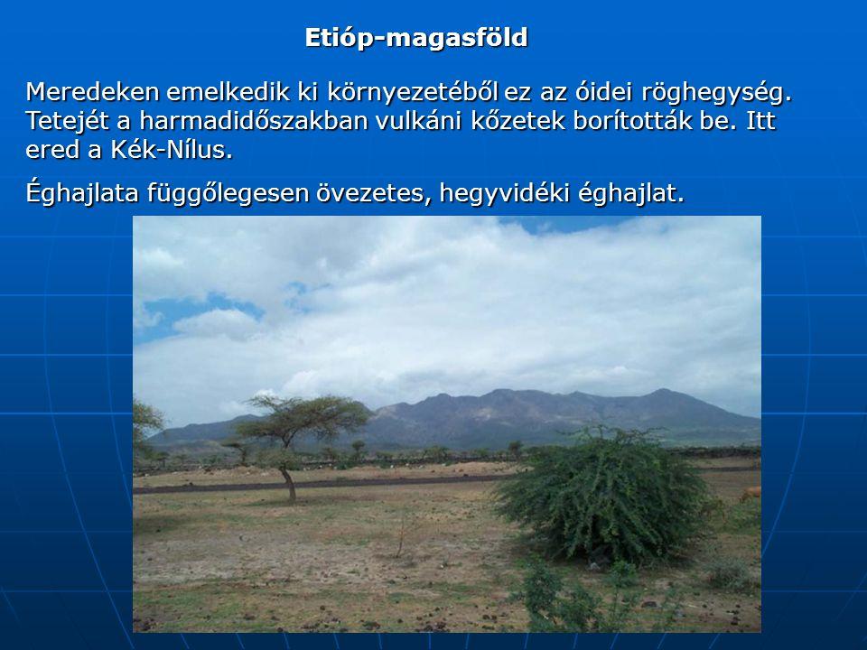 Etióp-magasföld Meredeken emelkedik ki környezetéből ez az óidei röghegység.