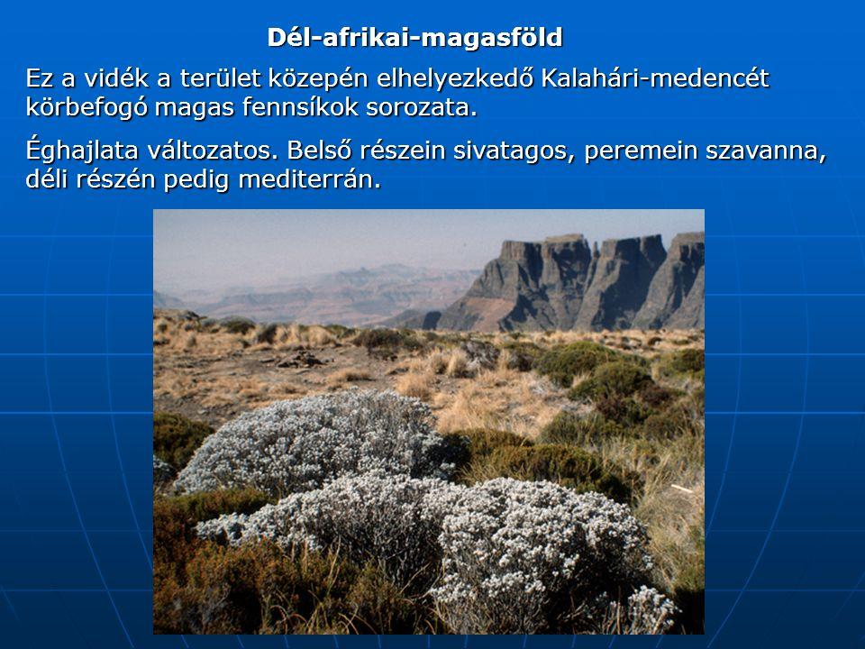 Dél-afrikai-magasföld Ez a vidék a terület közepén elhelyezkedő Kalahári-medencét körbefogó magas fennsíkok sorozata.