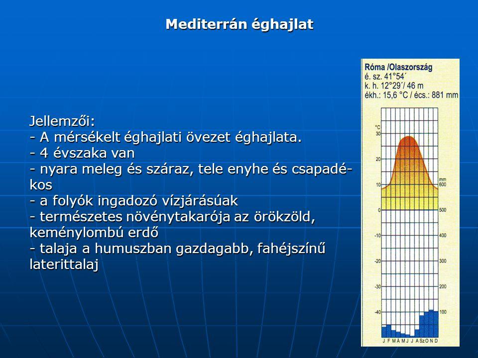 Mediterrán éghajlat Jellemzői: - A mérsékelt éghajlati övezet éghajlata.