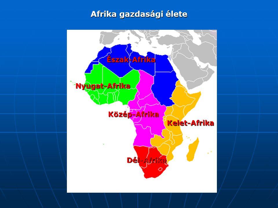 Afrika gazdasági élete Észak-Afrika Nyugat-Afrika Közép-Afrika Kelet-Afrika Dél-Afrika