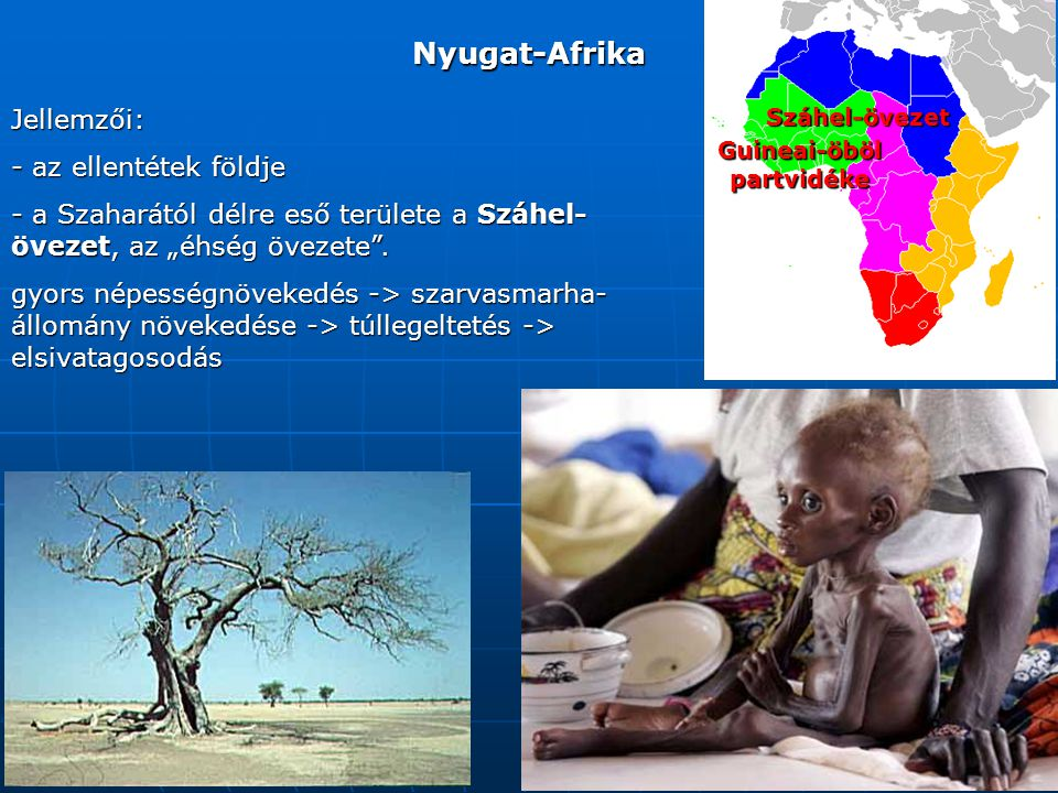 """Nyugat-Afrika Jellemzői: - az ellentétek földje - a Szaharától délre eső területe a Száhel- övezet, az """"éhség övezete ."""
