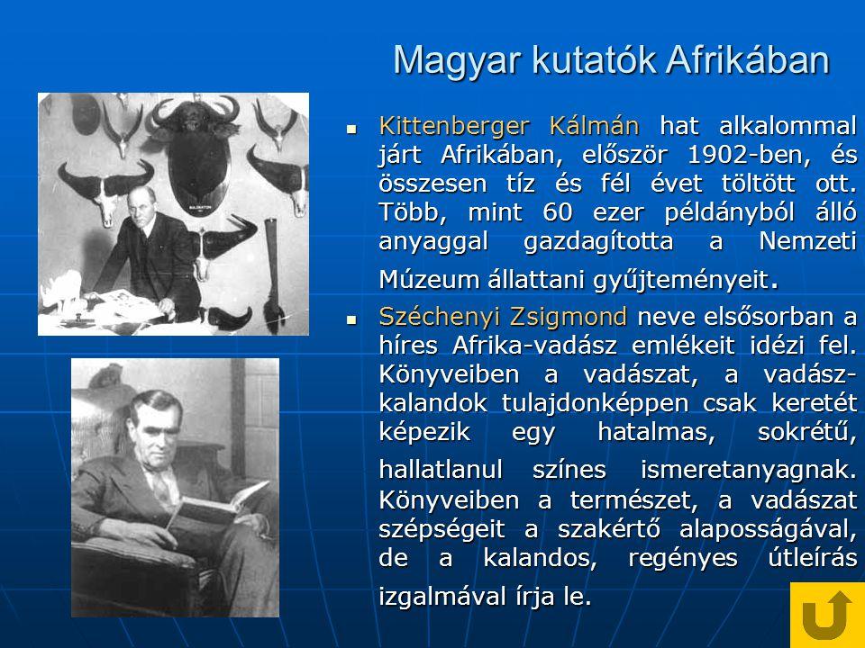 Magyar kutatók Afrikában Kittenberger Kálmán hat alkalommal járt Afrikában, először 1902-ben, és összesen tíz és fél évet töltött ott.