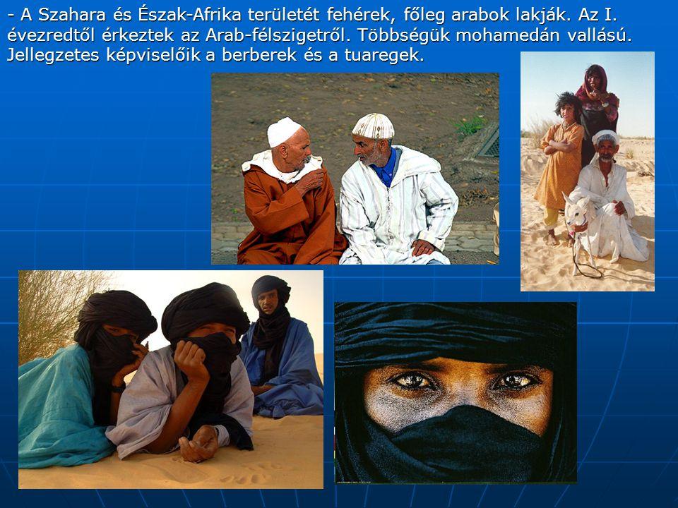 - A Szahara és Észak-Afrika területét fehérek, főleg arabok lakják.