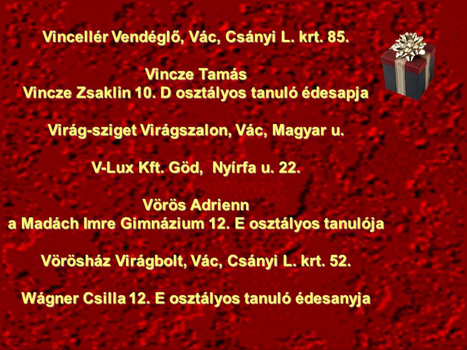 Vincellér Vendéglő, Vác, Csányi L.krt. 85. Vincze Tamás Vincze Zsaklin 10.
