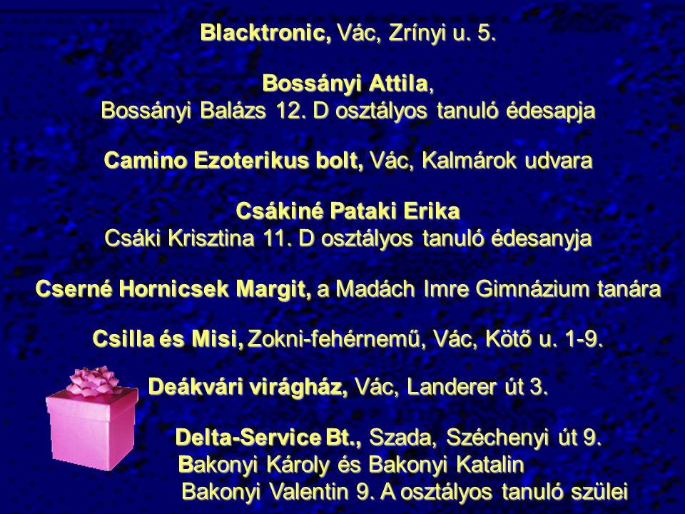 Blacktronic, Vác, Zrínyi u.5. Bossányi Attila, Bossányi Balázs 12.