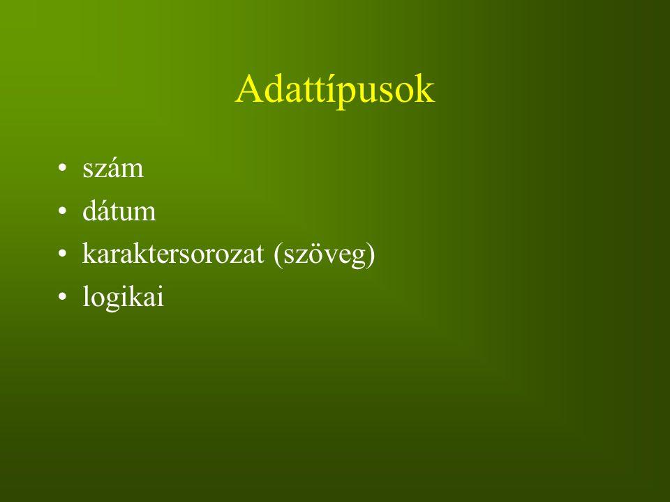 Adattípusok szám dátum karaktersorozat (szöveg) logikai