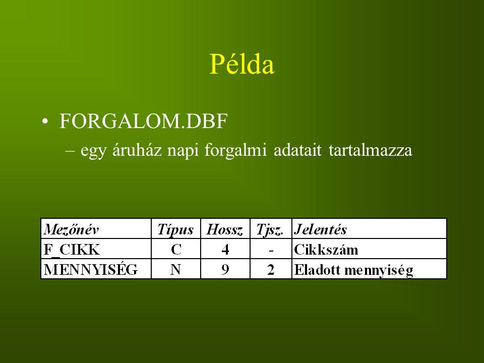Példa FORGALOM.DBF –egy áruház napi forgalmi adatait tartalmazza