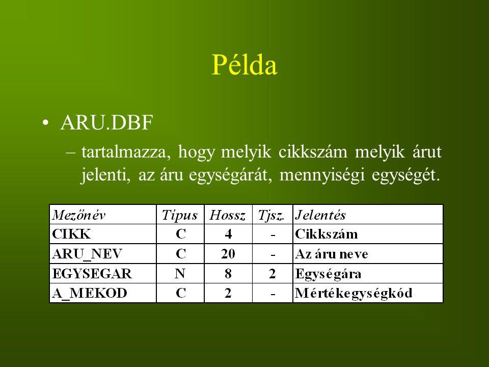 Példa ARU.DBF –tartalmazza, hogy melyik cikkszám melyik árut jelenti, az áru egységárát, mennyiségi egységét.