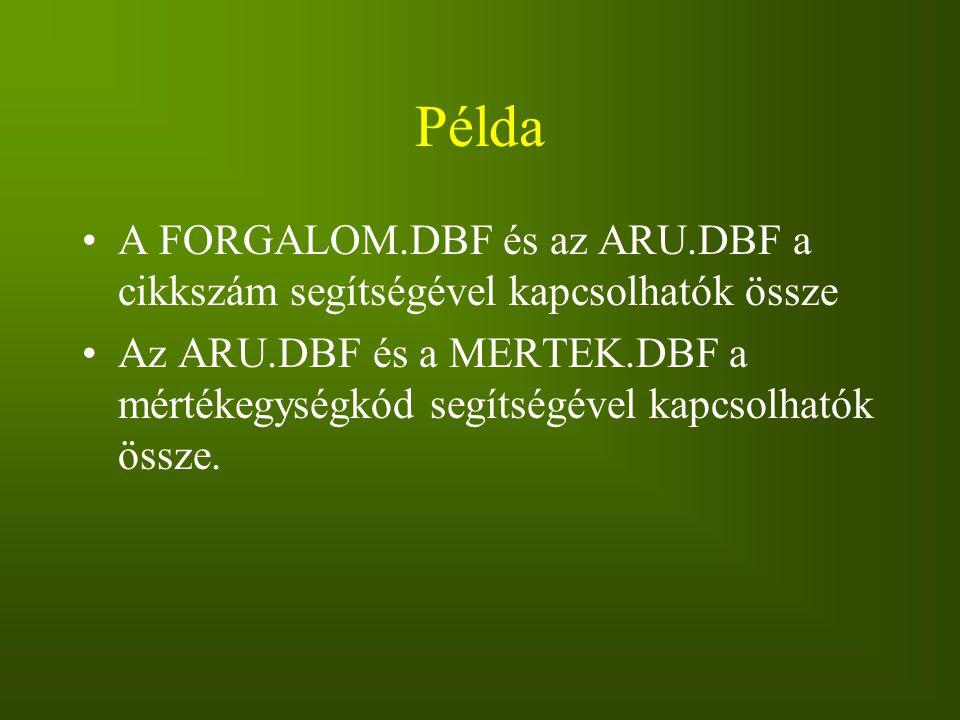 Példa A FORGALOM.DBF és az ARU.DBF a cikkszám segítségével kapcsolhatók össze Az ARU.DBF és a MERTEK.DBF a mértékegységkód segítségével kapcsolhatók ö