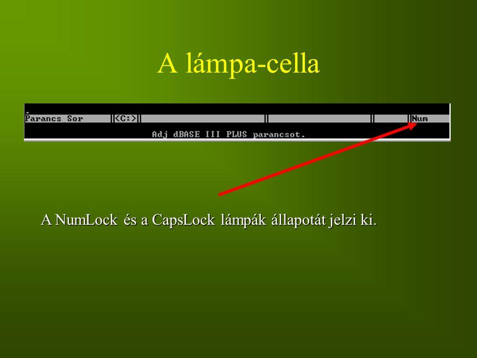 A lámpa-cella A NumLock és a CapsLock lámpák állapotát jelzi ki.