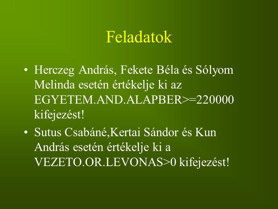 Feladatok Herczeg András, Fekete Béla és Sólyom Melinda esetén értékelje ki az EGYETEM.AND.ALAPBER>=220000 kifejezést! Sutus Csabáné,Kertai Sándor és