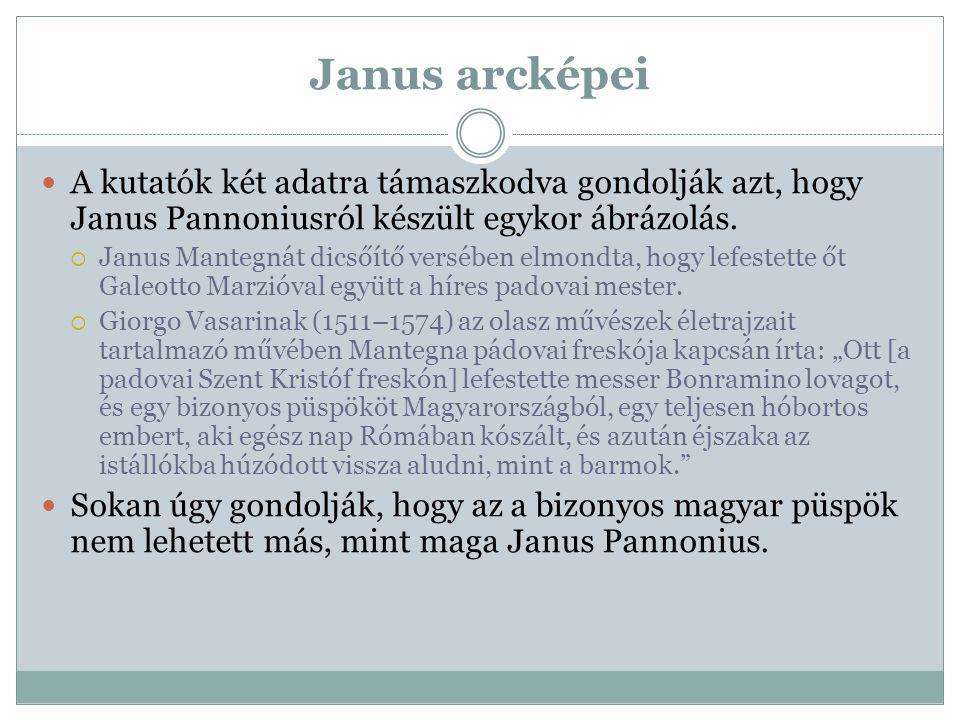 Janus arcképei A kutatók két adatra támaszkodva gondolják azt, hogy Janus Pannoniusról készült egykor ábrázolás.  Janus Mantegnát dicsőítő versében e