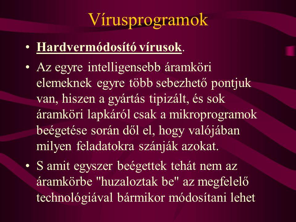 Vírusprogramok Hardvermódosító vírusok.